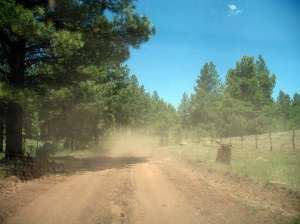 Dusty road to the cabin