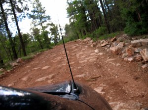 Our Neon did not have a good time going on this rocky, rutted road.